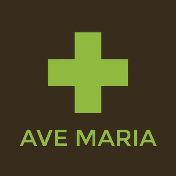 Ave Maria patika banner - Profi WebDesign